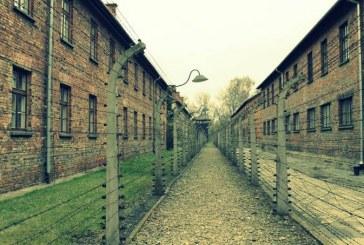 נמצא פתרון שיאפשר סיוע לניצולי השואה