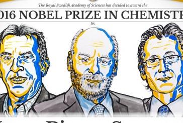 הוכרזו הזוכים בפרס נובל לשלום בכימיה